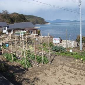 さぬき市津田町(津田北山)